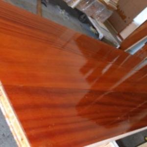 Wood Sing Core large pivot door panel