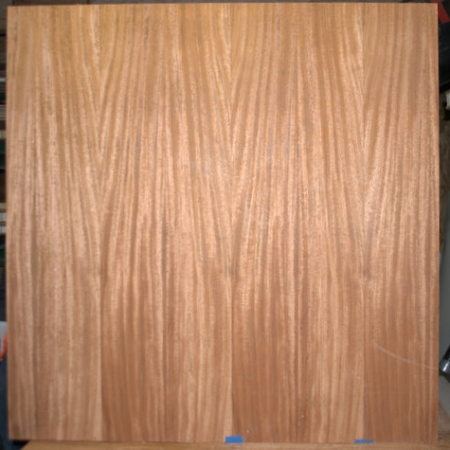 Large pivot door sing core hickory wood skin