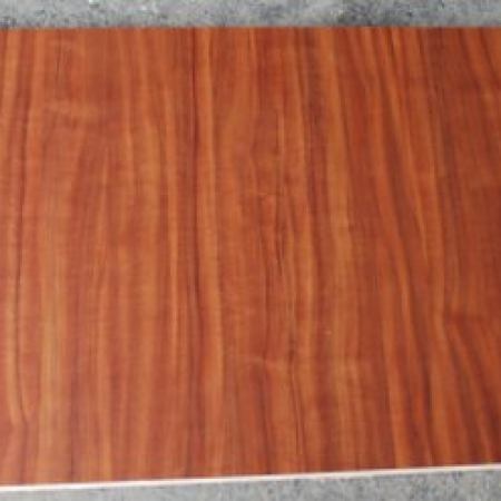 Mahogany Wood Skin large pivot door sing core