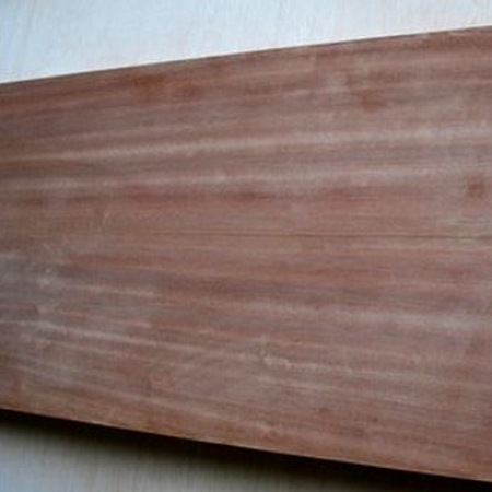 Sapele wood skin large pivot door sing core