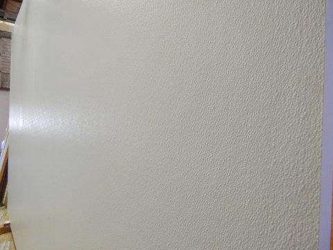 Large Pivot Door Fiberglass Skin 2