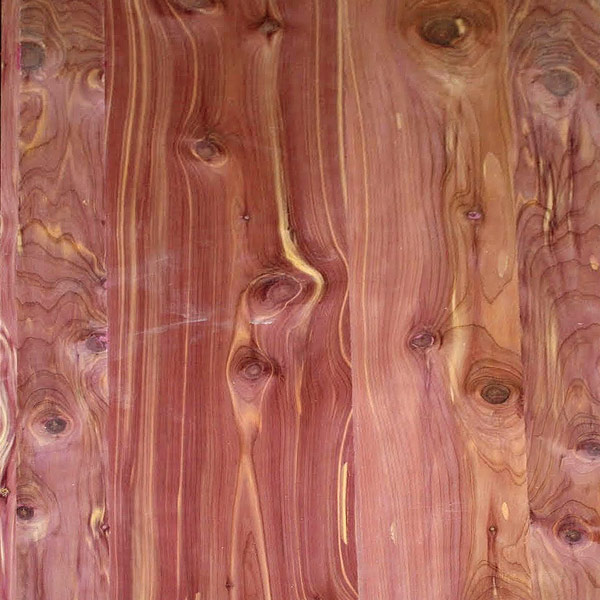 Large Pivot Door Jasper Plywood Skin